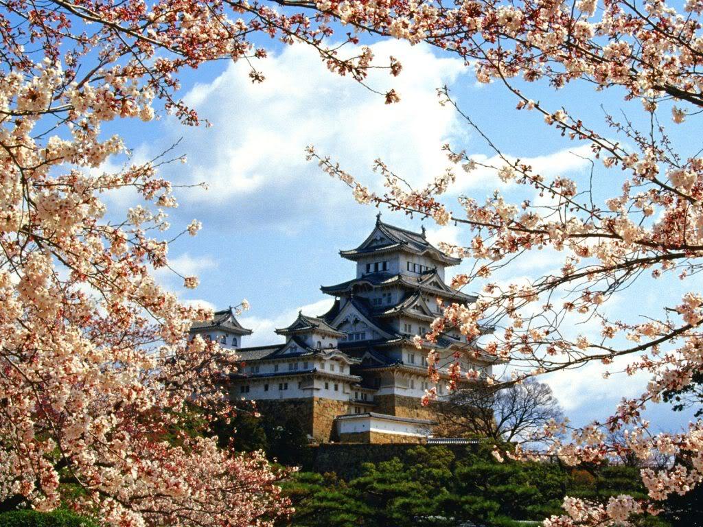 Những đức tính tốt của con người Nhật Bản.